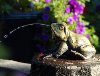 FrogFountain