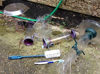 CleanBirdFeeders